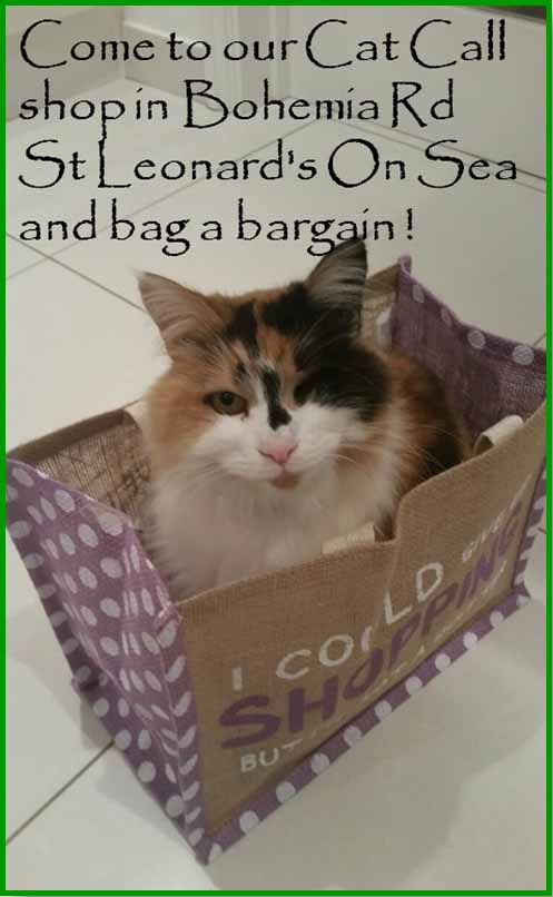 Visit our Cat Call shop