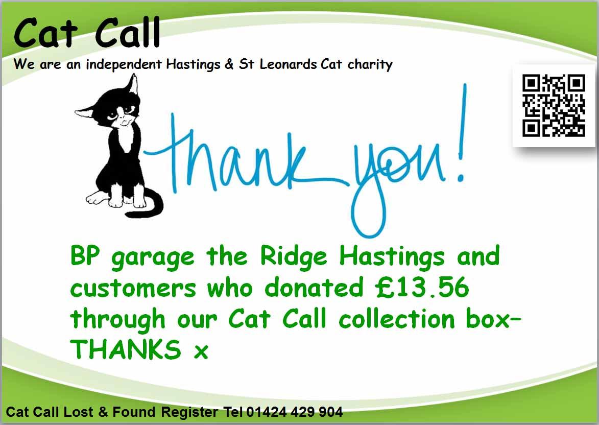 Thank you BP garage the Ridge Hastings
