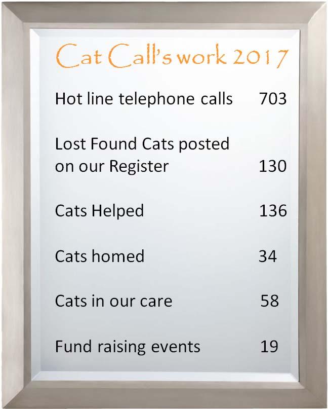 Cat Calls work 2017
