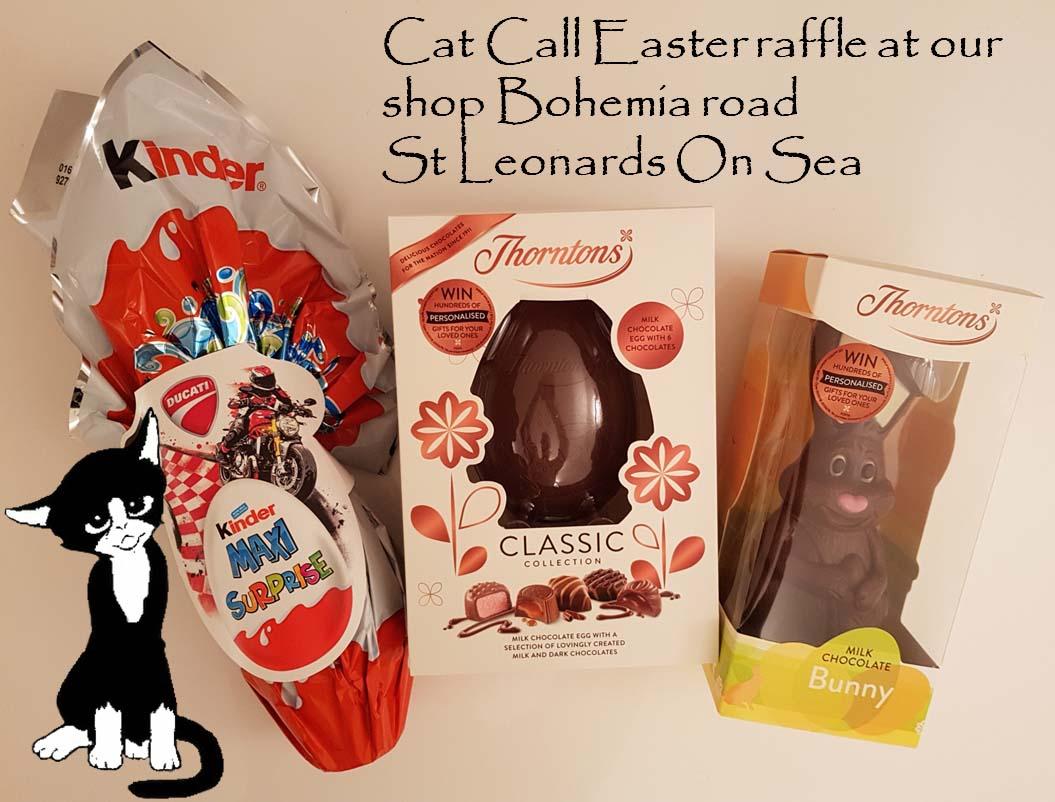 Cat Call charity Easter raffle