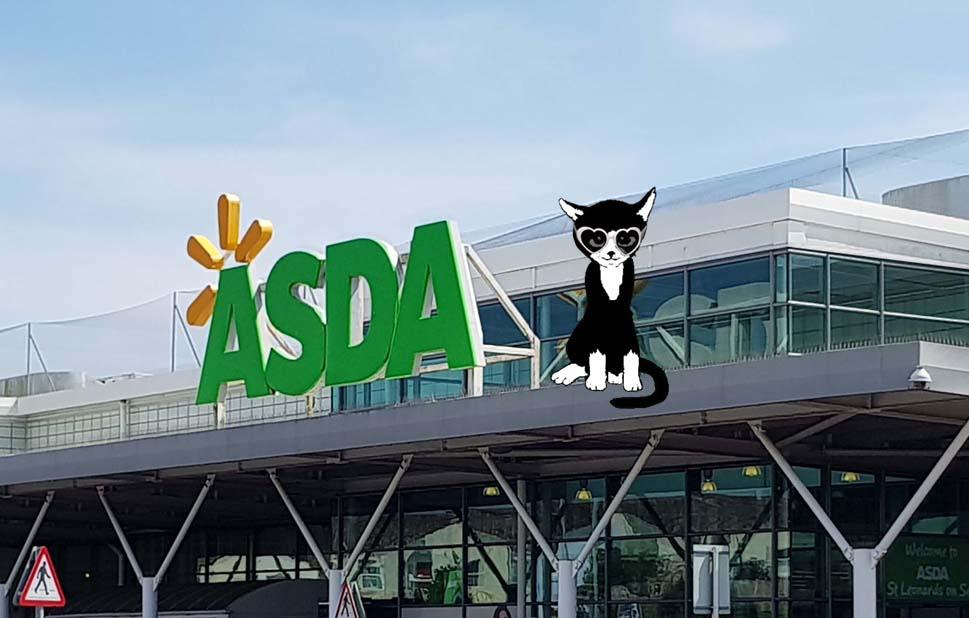 Cat Call Charity at Asda