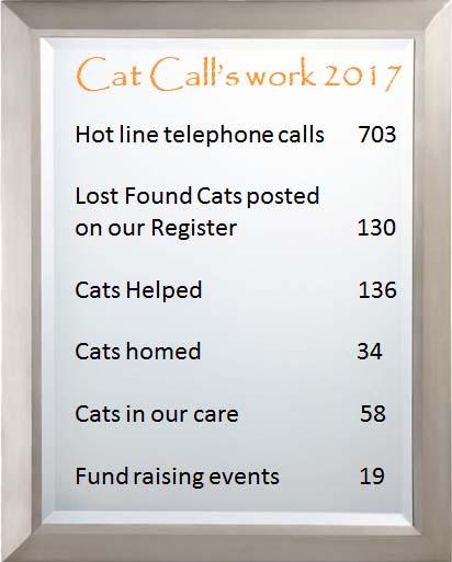 Cat Calls work - statistics 2017