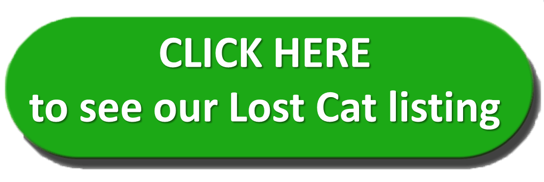 Click here to see Lost Cat listing