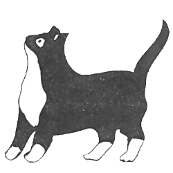Original Cat Call logo 1980s