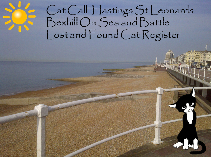 Cat Call Hastings area Lost & Found Register
