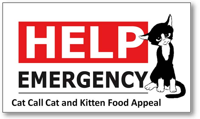 Cat Call Emergency Appeal