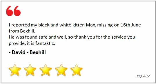 Thank you Cat Call 5 stars