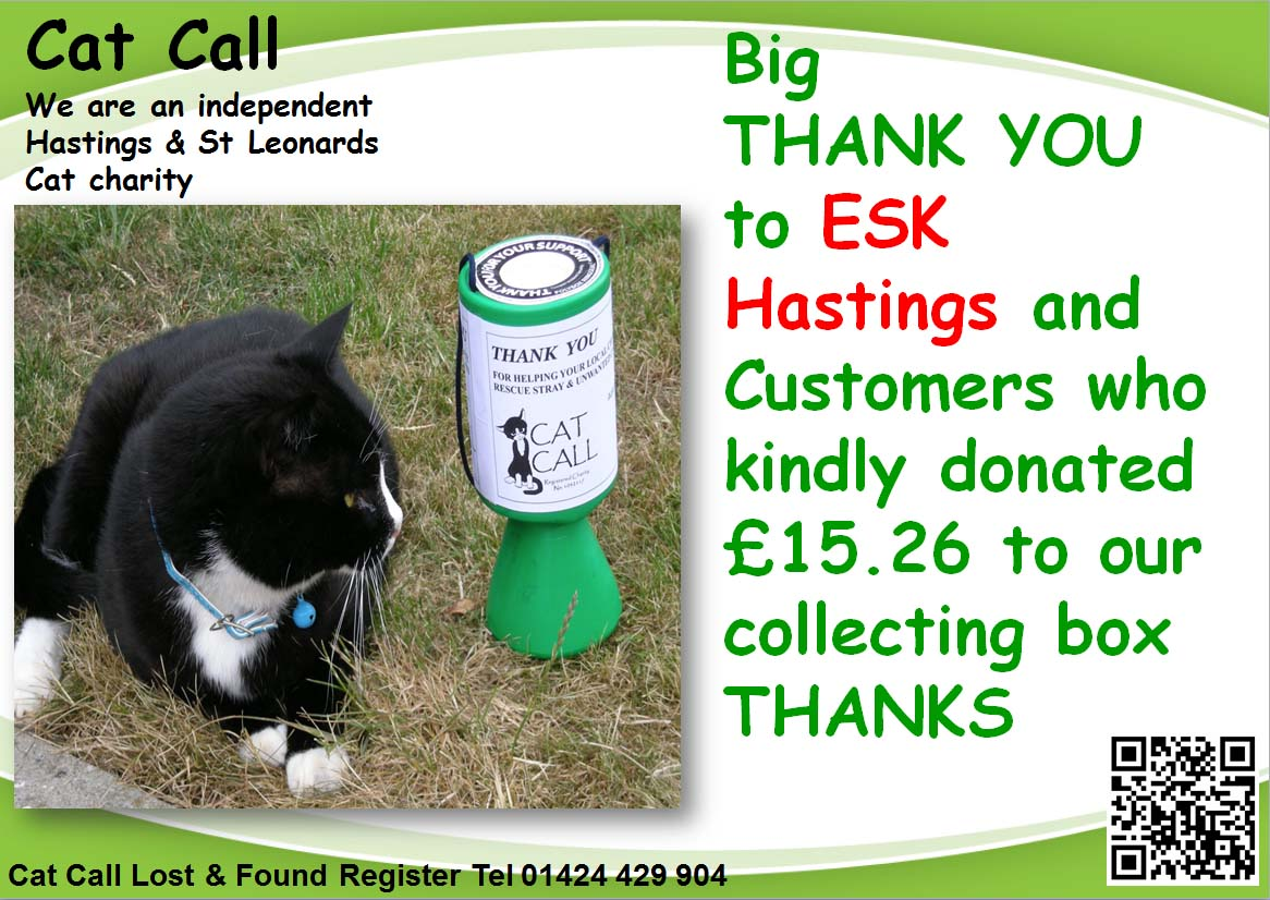 Thank you ESK Hastings from Cat Call
