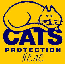 Cats Protection at Chelwood Gate