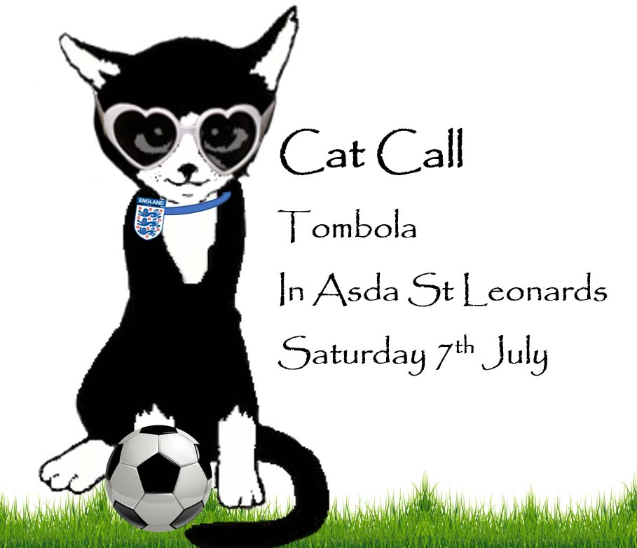 Cat Call Tombola Sat 7th July in Asda