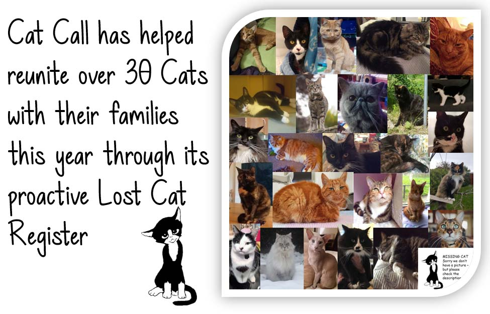 Cat Call has helped reunite over 30 cats this year
