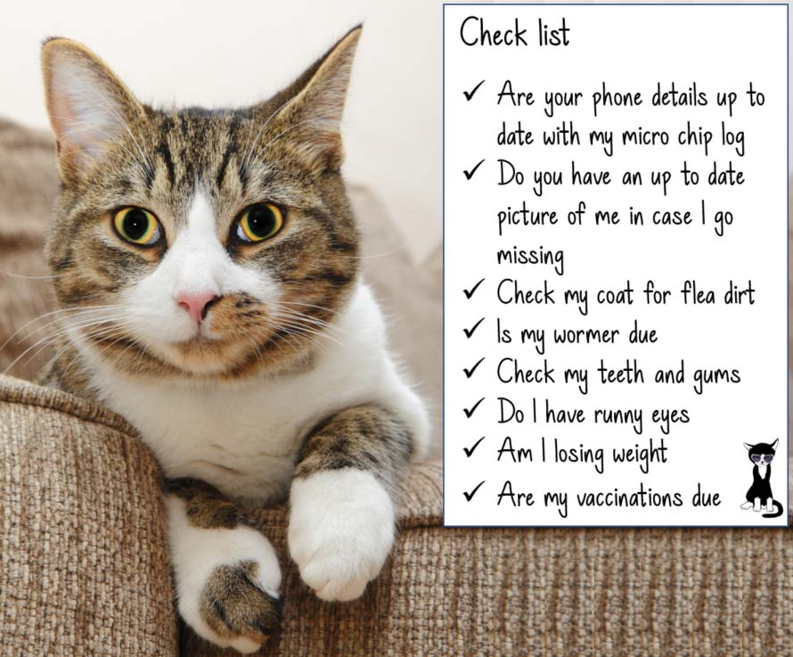 Check list for your Cats wellbeing this summer