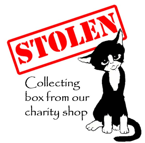 Stolen from Cat Call charity shop
