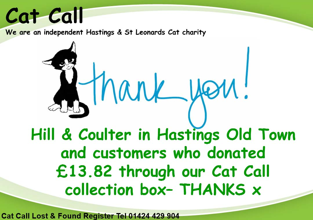 Thank you Hill and Coulter from Cat Call