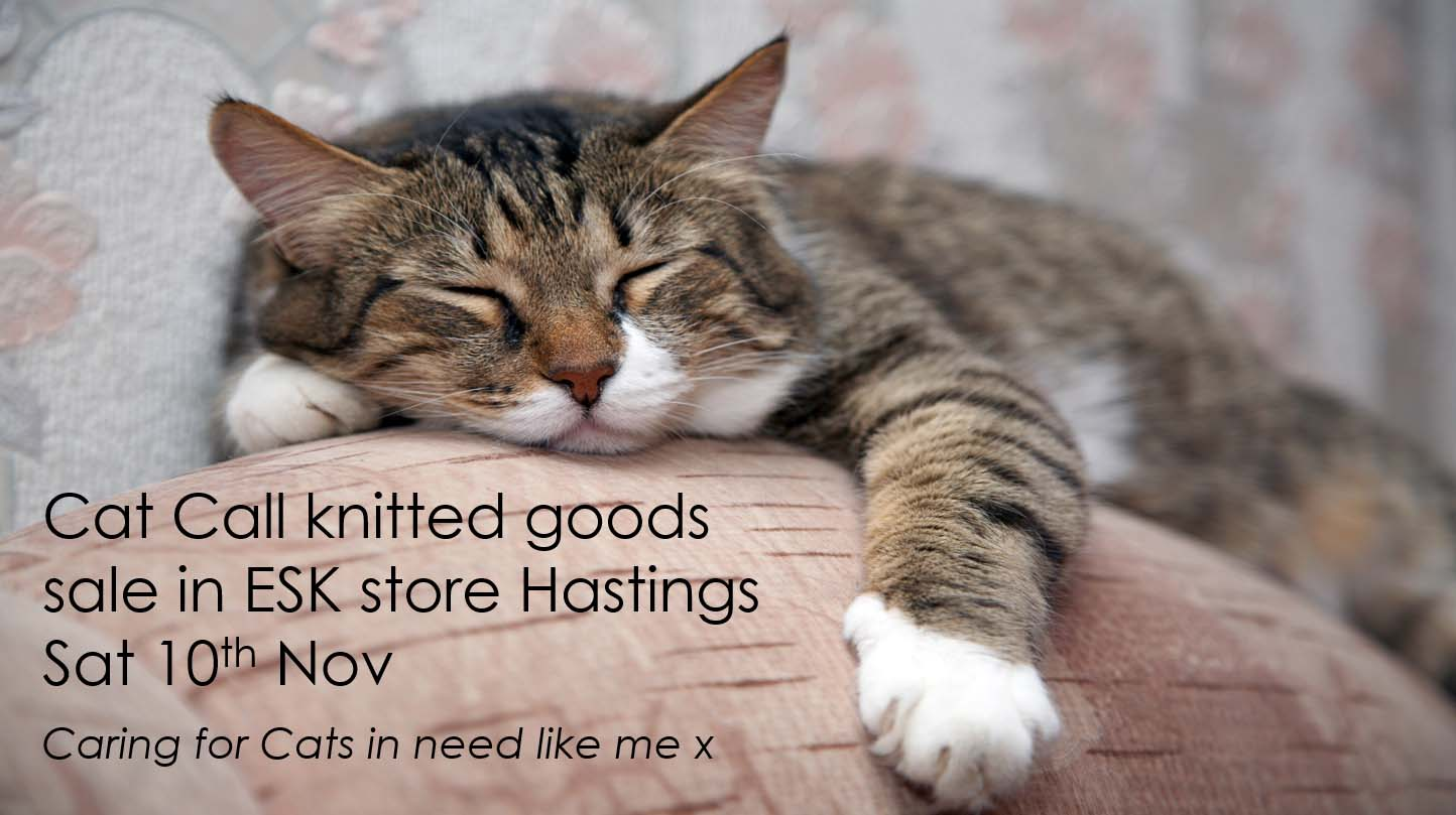 Cat Call charity at ESK Hastings