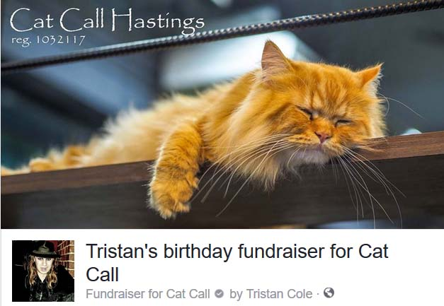 Tristans fundraising page for Cat Call
