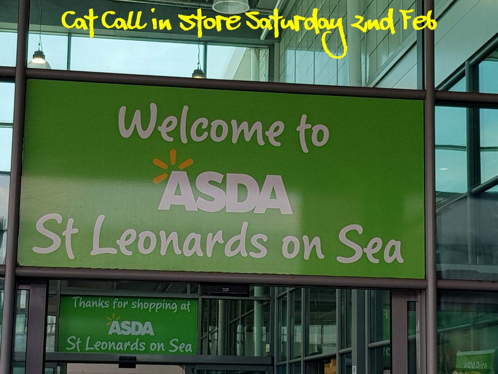 Cat Call in Asda St Leonards Sat 2nd Feb
