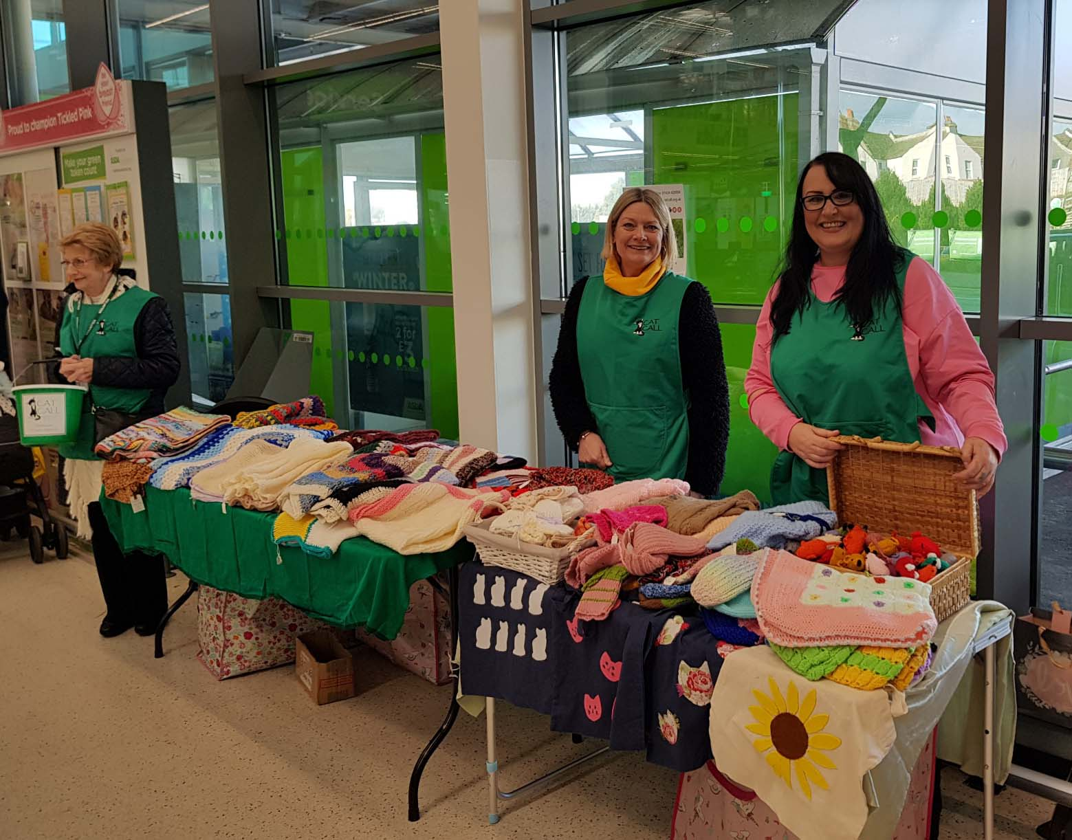 Cat Call Team at Knitted Goods Sale in Asda