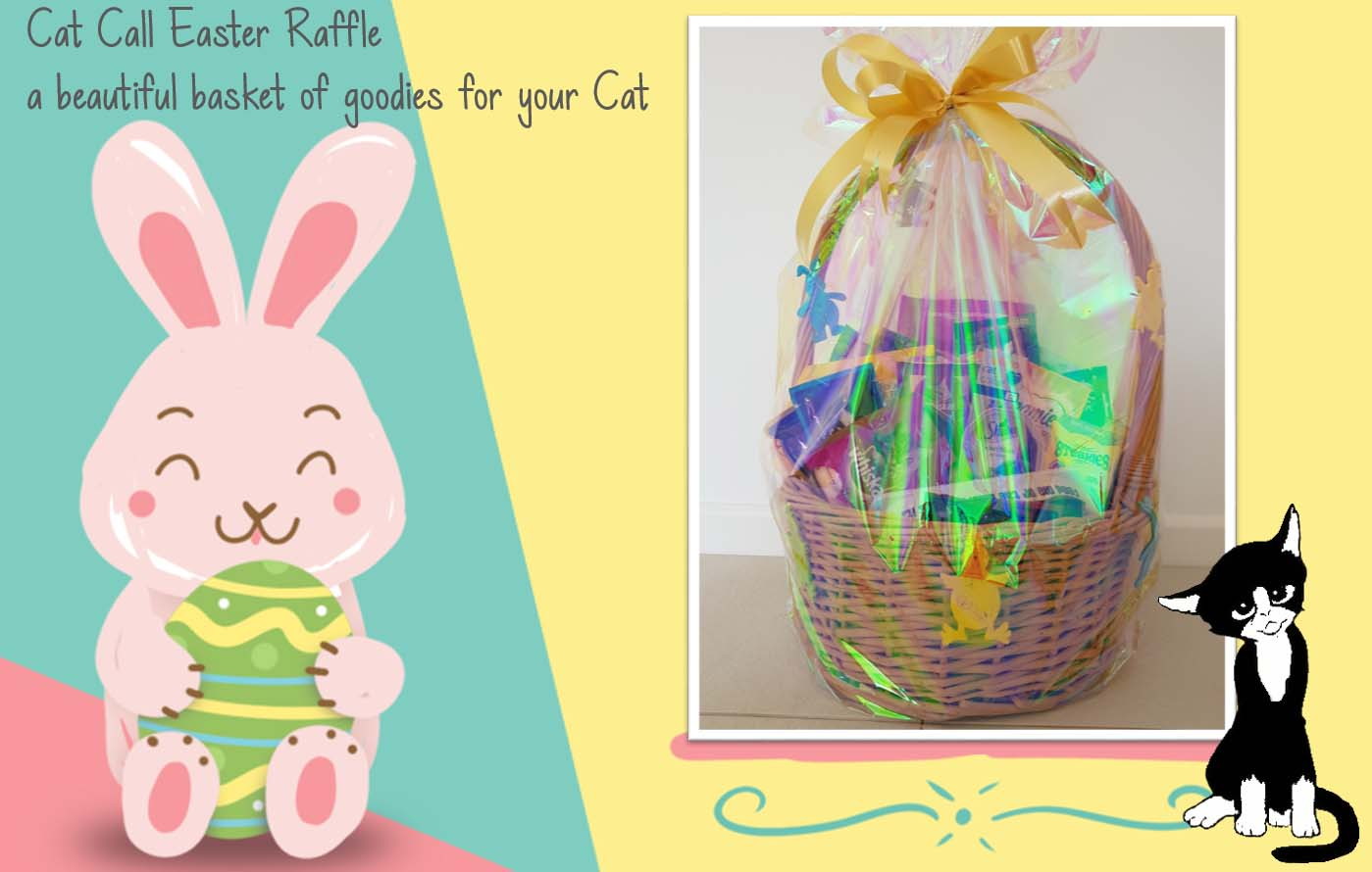 Cat Call charity Easter raffle