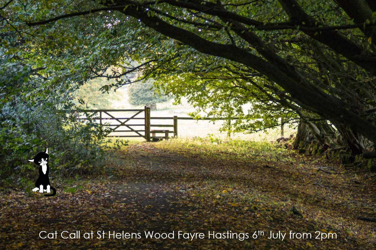 Cat Call at St Helens Wood Summer Fayre