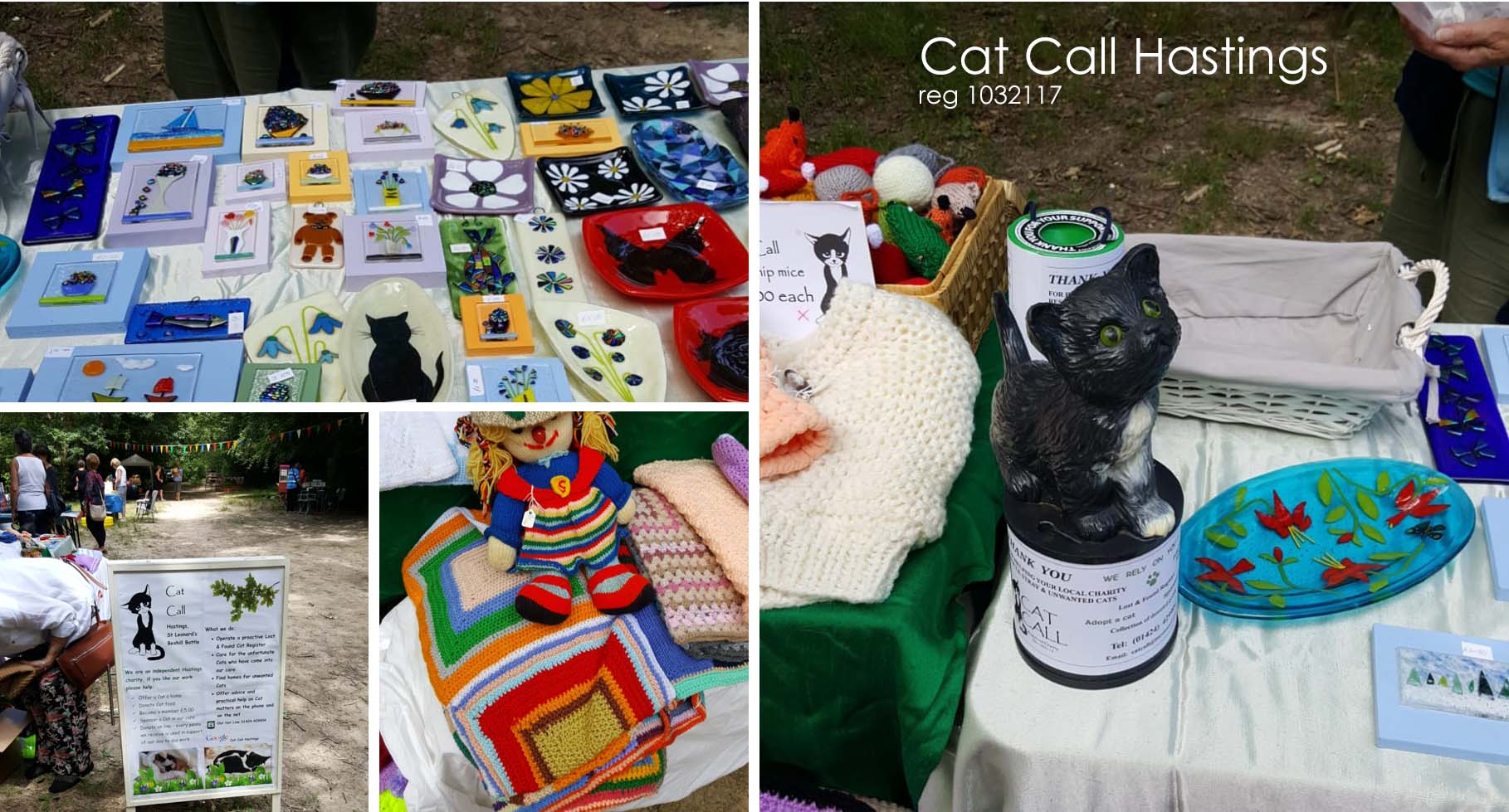 Cat Call Fun at the Summer Fayre