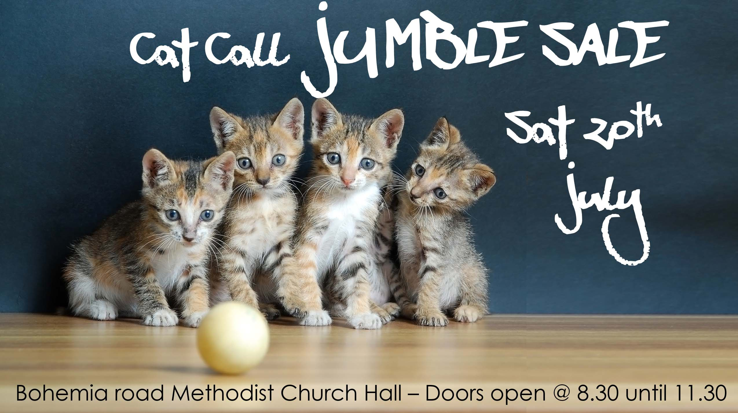 Cat Call Jumble Sale Sat 20th July