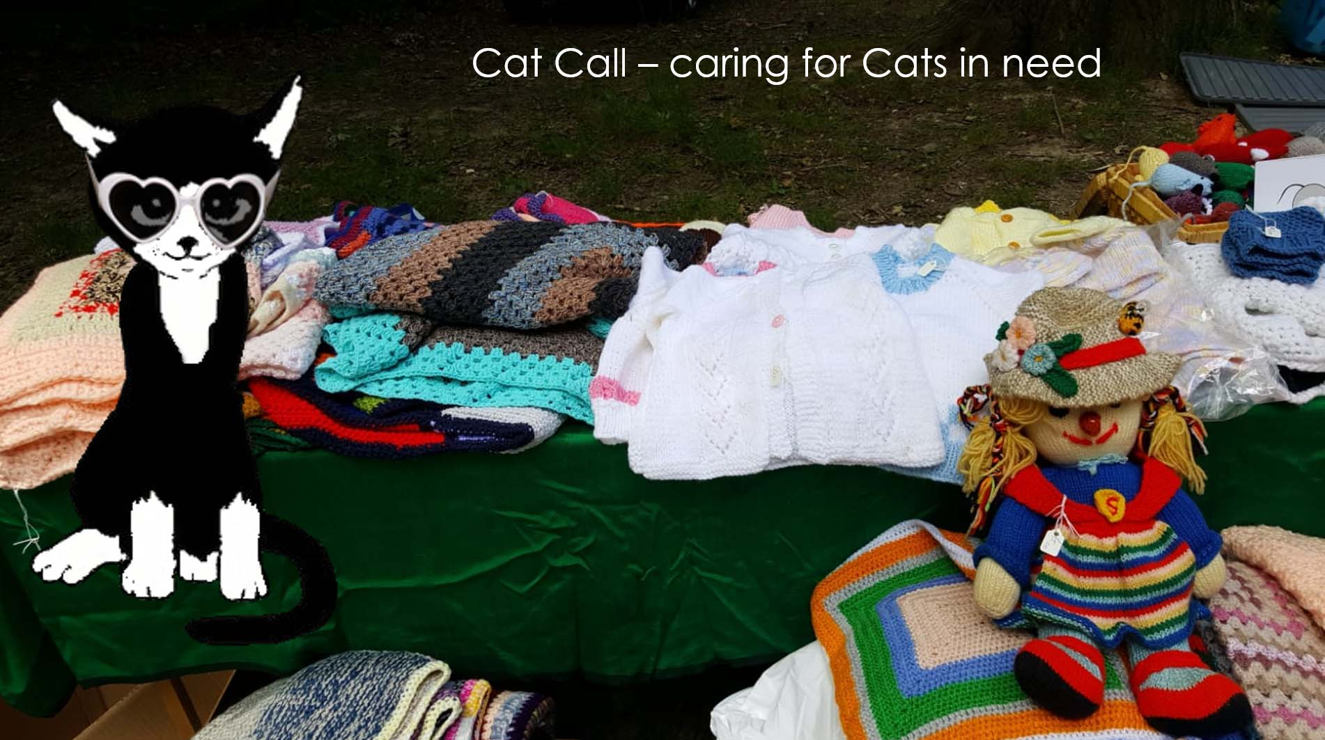 Cat Call caring for Cats in need