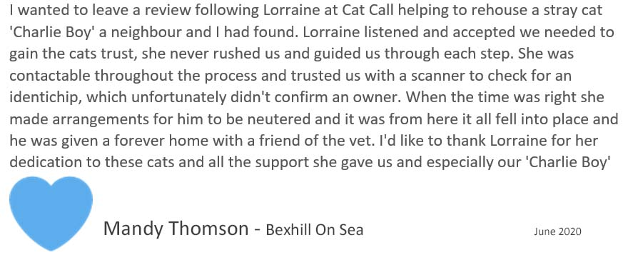 Cat Call charity review