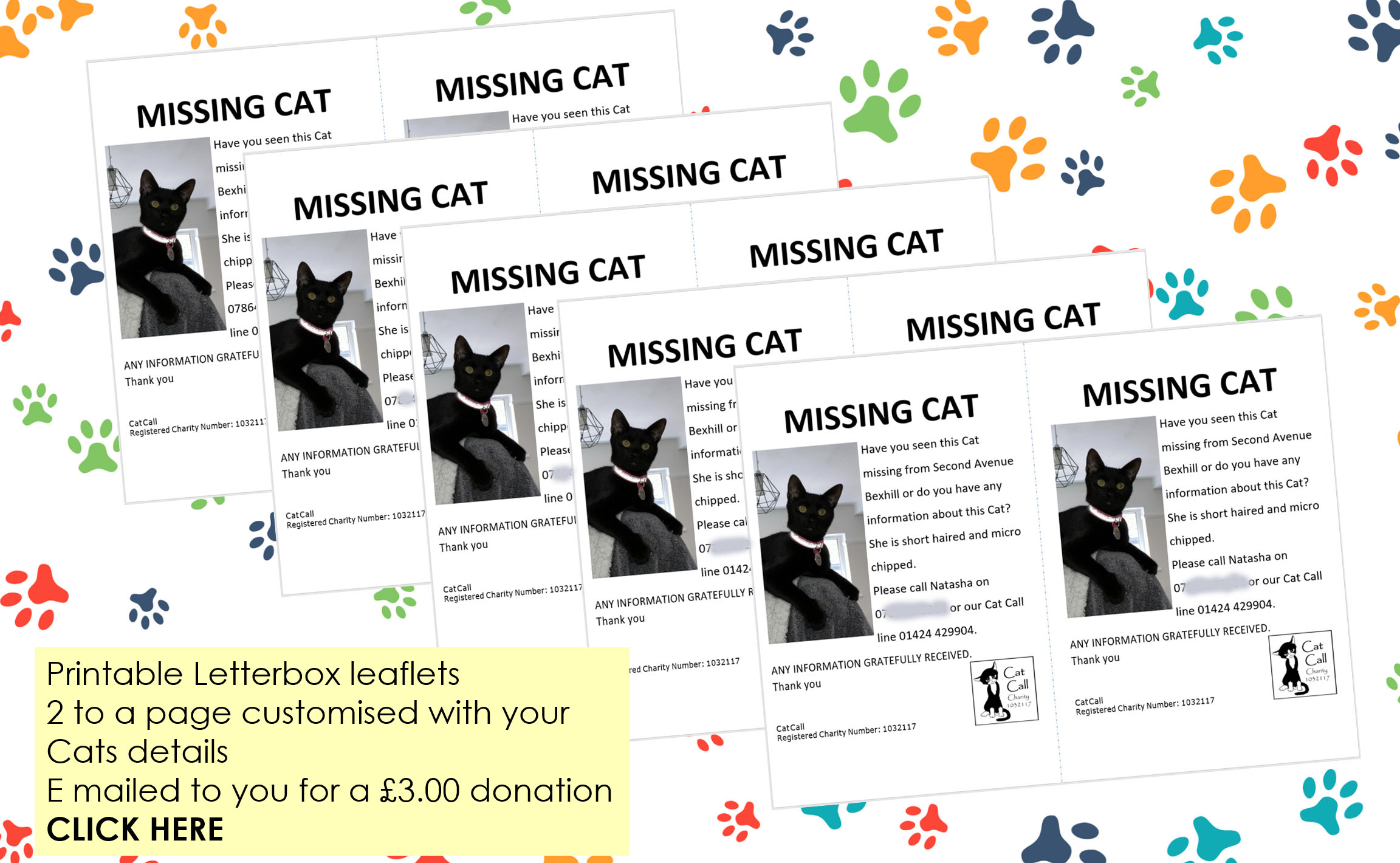 Cat Call lost Cat letterbox leaflets