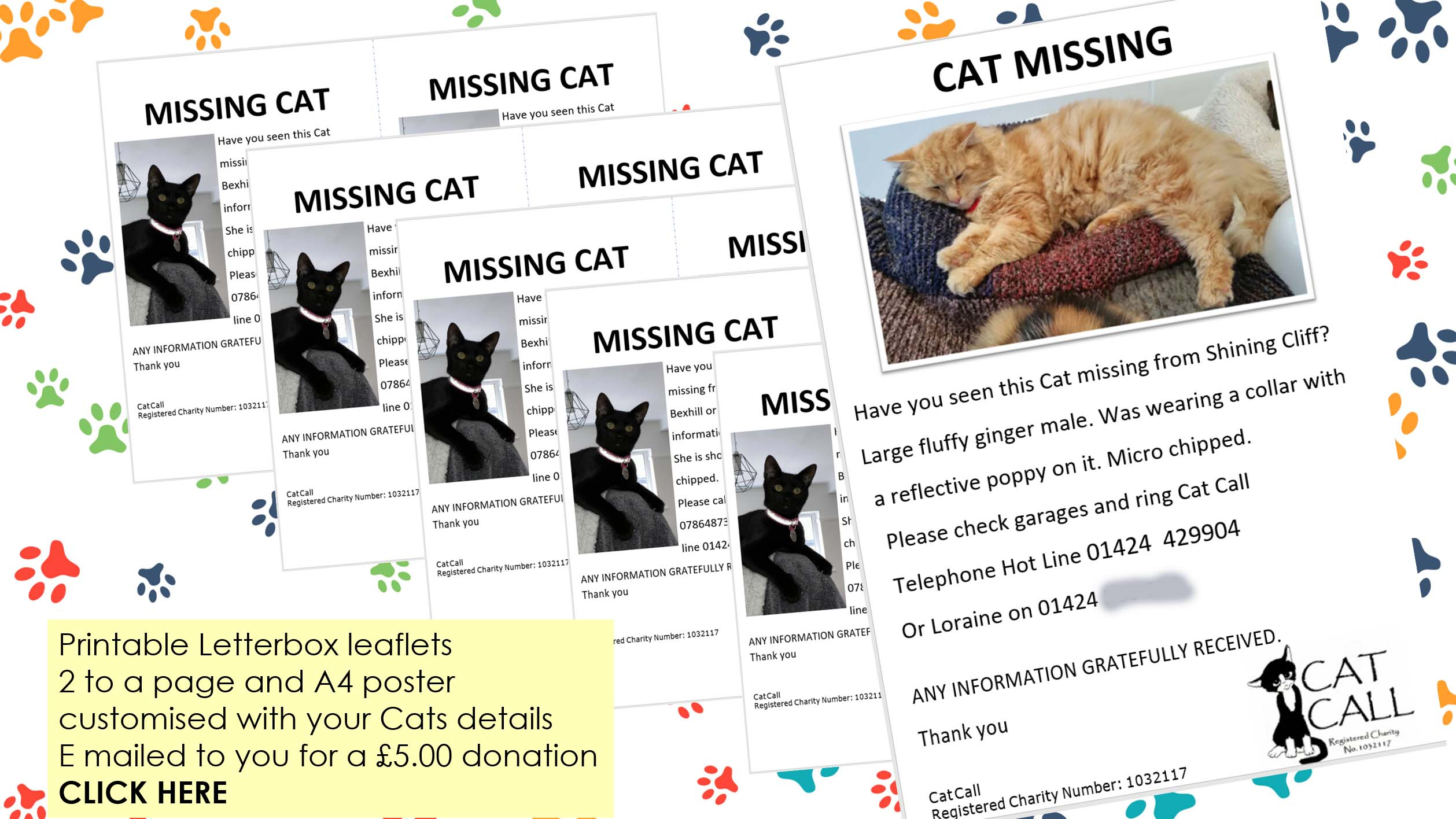 Cat Lost Cat leaflets