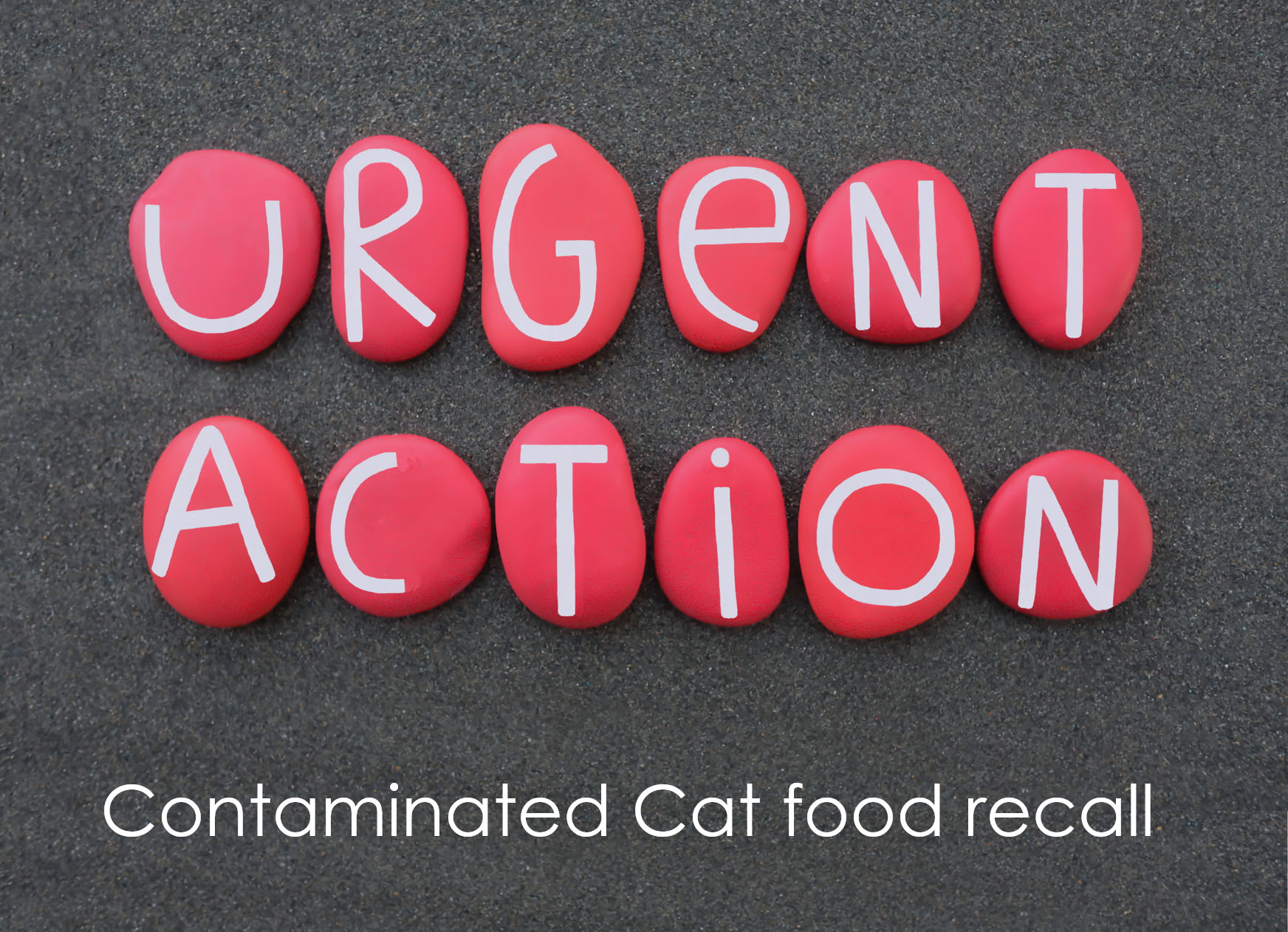 Food Standards Agency (FSA) have issued urgent advice to Cat Owners