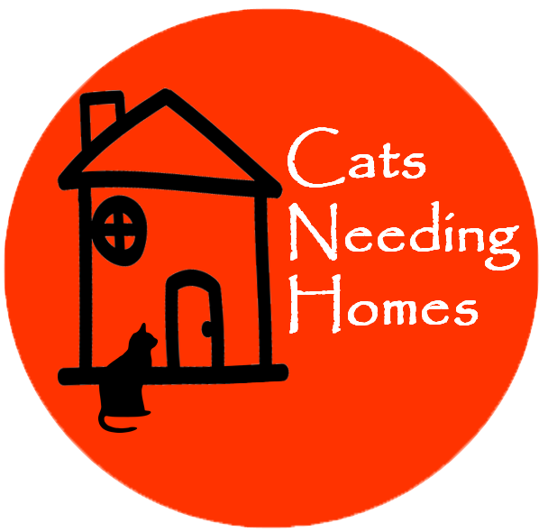Home a Cat from Cat Call